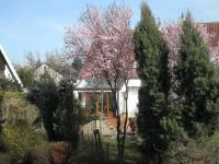 Pronájem domu v osobním vlastnictví, 200 m2, Praha 10 - Uhříněves