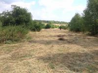 Prodej pozemku 4896 m², Mšecké Žehrovice