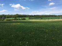 Prodej pozemku 2576 m², Velká Dobrá