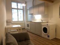 Pronájem bytu 1+kk v osobním vlastnictví 20 m², Praha 3 - Žižkov