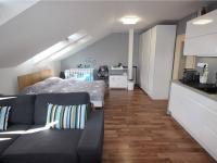 Pronájem bytu 1+kk v osobním vlastnictví 40 m², Tábor