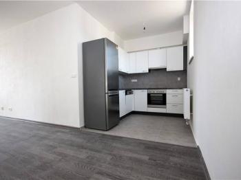 Pronájem bytu 3+kk v osobním vlastnictví 66 m², Opařany