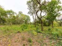 Prodej pozemku 9900 m², Neustupov