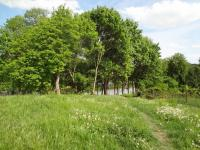pozemek (Prodej penzionu 2500 m², Petrohrad)