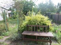 Zahrada v létě (Prodej domu v osobním vlastnictví 160 m², Chomutov)