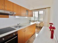 Prodej bytu 2+1 67 m², Louny