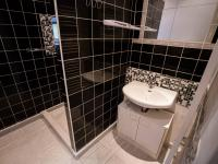 koupelna - 1.patro  - Prodej domu v osobním vlastnictví 400 m², Vejprty