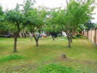 zahrada (Prodej domu v osobním vlastnictví 100 m², Žatec)