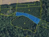 Prodej pozemku 233347 m², Borovno