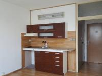 Pronájem bytu 1+1 v družstevním vlastnictví 36 m², Louny