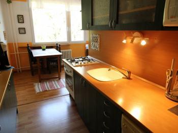 kuchyňská linka - Prodej bytu 3+1 v družstevním vlastnictví 78 m², Jirkov