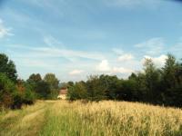 Prodej pozemku 37149 m², Jestřebí