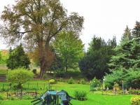 park (Prodej historického objektu 1200 m², Petrovice)