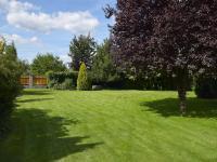 zahrada (Prodej domu v osobním vlastnictví 273 m², Pardubice)