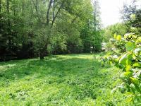 louka s potokem (Prodej chaty / chalupy 201 m², Rudník)