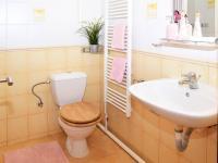 Byt v přízemí - koupelna se sprchovým koutem, toaletou a umyvadlem.  (Prodej domu v osobním vlastnictví 118 m², Brázdim)