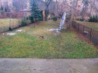 zahrada (Prodej bytu 2+1 v osobním vlastnictví 47 m², Praha 10 - Vršovice)