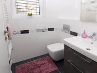 Toaleta s umyvadlem a zrcadlem. - Prodej domu v osobním vlastnictví 107 m², Praha 9 - Újezd nad Lesy