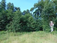 pozemek (Prodej pozemku 1801 m², Jablonec nad Nisou)