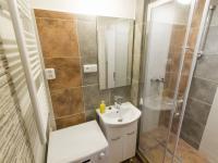 koupelna (Pronájem bytu 2+1 v osobním vlastnictví 51 m², Mladá Boleslav)
