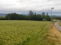 foto 5 - pozemek (Prodej pozemku 16250 m², Dílce)