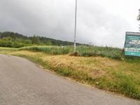 foto 3 - přístup k pozemku (Prodej pozemku 16250 m², Dílce)