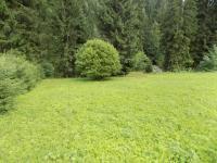 Prodej pozemku 2082 m², Kořenov
