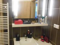 koupelna (Prodej bytu 1+kk v osobním vlastnictví 31 m², Kořenov)
