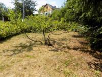 foto 7 - zahrada u domu (Prodej chaty / chalupy 85 m², Pěnčín)