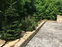 foto 5 - pozemek u domu - Prodej domu v osobním vlastnictví 900 m², Jablonec nad Nisou