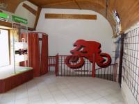 foto 5 - prodejna - Pronájem obchodních prostor 40 m², Jablonec nad Nisou