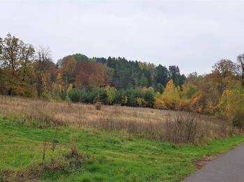 foto 2 - Prodej pozemku 36149 m², Český Dub