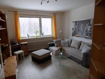 obývací pokoj - Prodej bytu 2+1 v osobním vlastnictví 56 m², Liberec