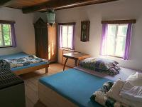 Prodej chaty / chalupy 250 m², Rokytnice v Orlických horách