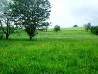 Prodej pozemku 3132 m², Milotice nad Opavou