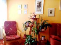 obývací pokoj (Prodej bytu 2+1 v osobním vlastnictví 53 m², Bruntál)