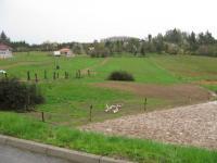 Prodej pozemku 5538 m², Olšany