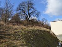 Prodej pozemku 2726 m², Olšany