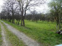 Prodej pozemku 7483 m², Přerov