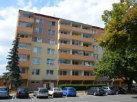 Pohled na dům  (Pronájem bytu 3+1 v družstevním vlastnictví 72 m², Vyškov)