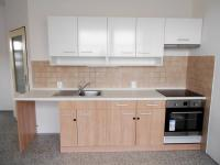 Pronájem bytu 4+kk v osobním vlastnictví 97 m², Vyškov