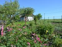 Zahrada (Prodej domu v osobním vlastnictví 187 m², Kulířov)