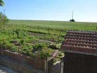 Pohled z okna na zahradu  (Prodej domu v osobním vlastnictví 187 m², Kulířov)