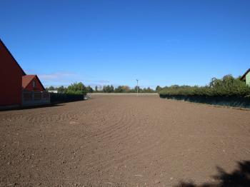 Prodej pozemku 1500 m², Hoštice-Heroltice