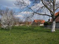 Zahrada za domem - Prodej domu v osobním vlastnictví 215 m², Bučina