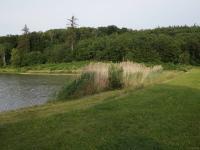 Rybník v Pavlovicích - Prodej chaty / chalupy 36 m², Bohdalice-Pavlovice
