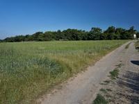 Přístupová cesta, pohled na pozemek - severní směr - Prodej pozemku 1340 m², Habrůvka