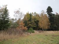 Příroda v okolí pozemku (Prodej pozemku 3526 m², Semtěš)