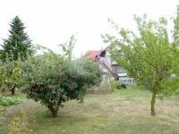 zahrada (Prodej domu v osobním vlastnictví 195 m², Tuklaty)