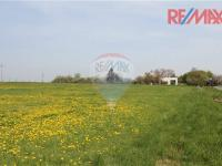 Prodej pozemku 11963 m², Křesetice